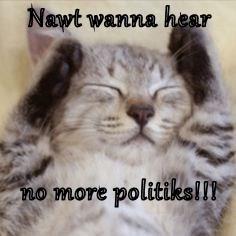 Nawt wanna hear  no more politiks!!!