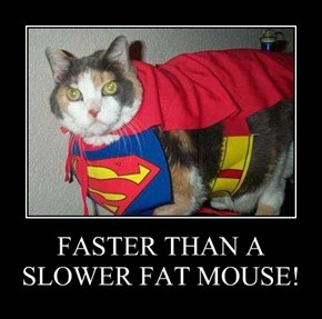 FASTER THAN A SLOWER FAT MOUSE!