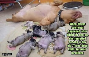 """When  Marge  saw  what  happened  after Ralph  let  one  go,  she  regretted  serving  3  day  old  """"Three  Bean  Chilli  Surprise""""  for dinner."""