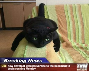 Breaking News - New Hovercat Express Service to the Basement to begin running Monday