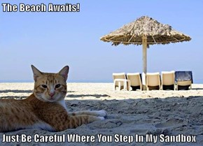 The Beach Awaits!  Just Be Careful Where You Step In My Sandbox