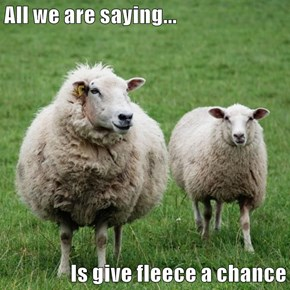 All we are saying...  Is give fleece a chance