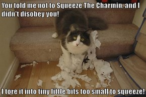 You told me not to Squeeze The Charmin, and I didn't disobey you!  I tore it into tiny little bits too small to squeeze!