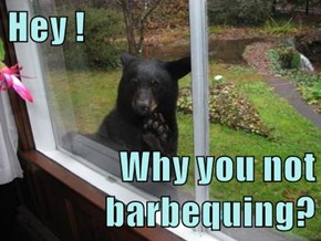 Hey !  Why you not barbequing?
