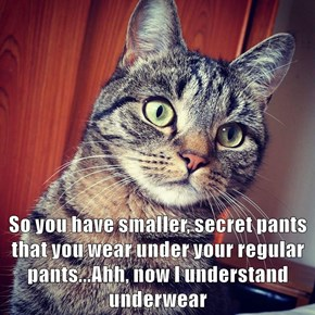 So you have smaller, secret pants that you wear under your regular pants...Ahh, now I understand underwear