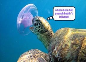 o boi o boi o boi, peenuh buddr 'n jellyfish!