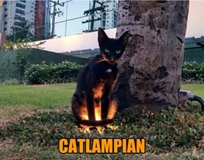 CATLAMPIAN
