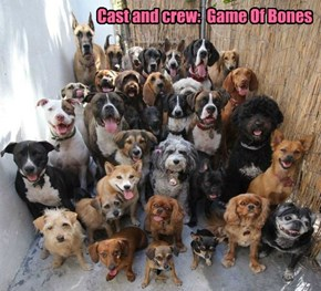 Cast and crew:  Game Of Bones