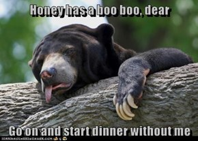Honey has a boo boo, dear  Go on and start dinner without me