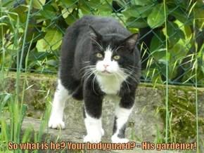 So what is he? Your bodyguard? - His gardener!