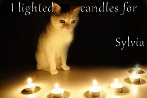 I lighted        candles for  Sylvia