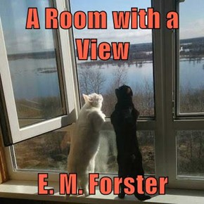 A Room with a View  E. M. Forster