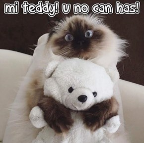 The baby's teddy?