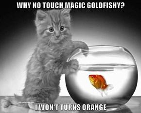 WHY NO TOUCH MAGIC GOLDFISHY?              I WON'T TURNS ORANGE