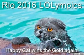 Happy Cat wins the Gold again!