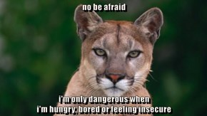 no be afraid  i'm only dangerous when                                                                                                 i'm hungry, bored or feeling insecure