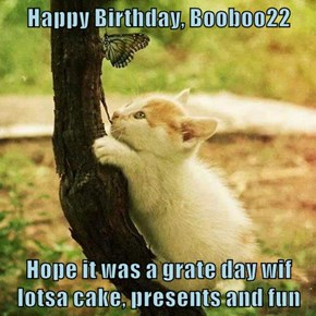 Happy Birthday, Booboo22  Hope it was a grate day wif lotsa cake, presents and fun