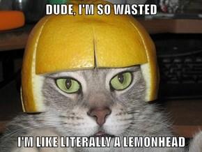 DUDE, I'M SO WASTED  I'M LIKE LITERALLY A LEMONHEAD