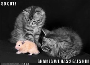 SO CUTE  SHAMES WE HAS 2 EATS HIM