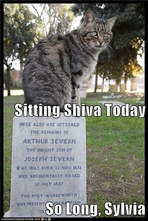 Sitting Shiva Today So Long, Sylvia