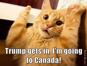 Trump even has the animals running to Canada.