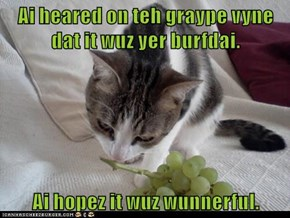 Ai heared on teh graype vyne dat it wuz yer burfdai.  Ai hopez it wuz wunnerful.