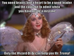You need brains and a heart to be a good leader, and the courage to admit when                                                                          you have made a mistake  Only the Wizard Of Oz can help you Mr. Trump!