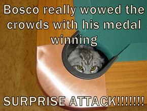 Bosco really wowed the crowds with his medal winning  SURPRISE ATTACK!!!!!!!