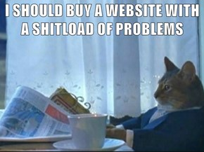 I SHOULD BUY A WEBSITE WITH A SHITLOAD OF PROBLEMS