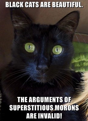 BLACK CATS ARE BEAUTIFUL.  THE ARGUMENTS OF SUPERSTITIOUS MORONS                     ARE INVALID!