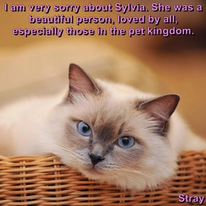I am very sorry about Sylvia. She was a beautiful person, loved by all, especially those in the pet kingdom.   Stray