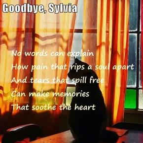 Goodbye, Sylvia