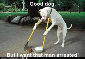 Good dog.   But I want that man arrested!