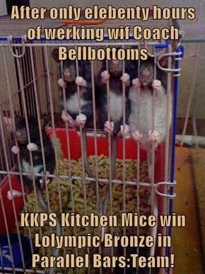 After only elebenty hours of werking wif Coach Bellbottoms  KKPS Kitchen Mice win Lolympic Bronze in                                     Parallel Bars:Team!