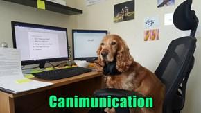 Canimunication