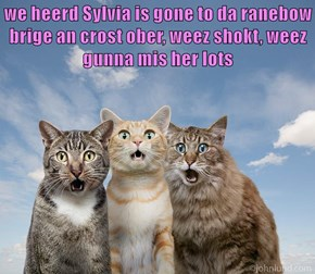 we heerd Sylvia is gone to da ranebow brige an crost ober, weez shokt, weez gunna mis her lots