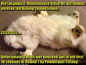 Rio LoLympics: Maintenance Kittie Mr. AllThumbs entered teh Boxing Competishun.. ZZZZZzzzzz..... Unfortunately, hims wer knocked owt in teh first 10 sekonds of Rownd 1 by Powderpuff Tiffany!