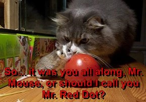 So... it was you all along, Mr. Mouse, or should I call you Mr. Red Dot?