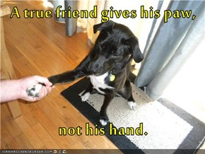 A true friend gives his paw,  not his hand.