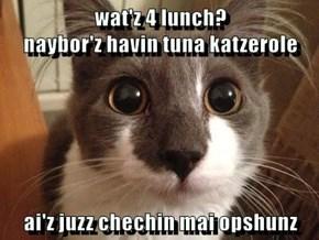 wat'z 4 lunch?                                         naybor'z havin tuna katzerole  ai'z juzz chechin mai opshunz