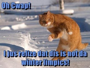 Oh Cwap!  I jus relize dat dis is not da winter limpics!