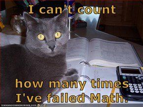 I can't count  how many times I've failed Math.