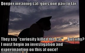 "Deeper meaning cat, goes one paw to far  They say ""curiosity killed the cat"" ... But why?     I must begin an investigation and experimantion on this at once!"