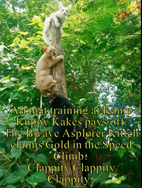 All that training at Kamp Kuppy Kakes pays off.   The Bwave Asplorer Kitteh claims Gold in the Speed Climb!                                 Clappity Clappity Clappity!