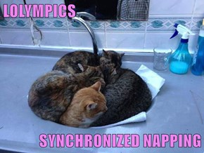 LOLYMPICS  SYNCHRONIZED NAPPING