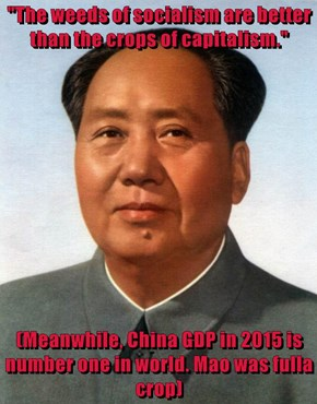 """The weeds of socialism are better than the crops of capitalism.""  (Meanwhile, China GDP in 2015 is number one in world. Mao was fulla crop)"