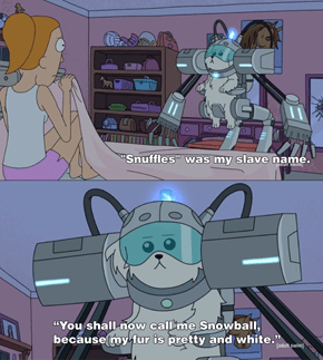 Where Are My Testicles Summer?