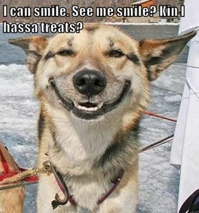I can smile. See me smile? Kin I hassa treats?