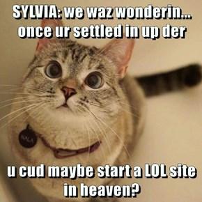 SYLVIA: we waz wonderin... once ur settled in up der  u cud maybe start a LOL site in heaven?