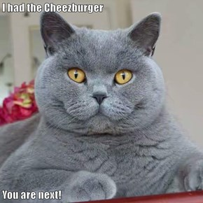 I had the Cheezburger  You are next!